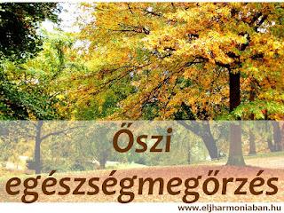 ájurvéda vata egyensúly, ájurvéda ősz, őszi időszak, egészség ősszel