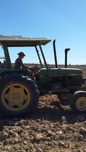 Farmer Helen