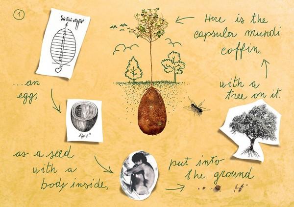 Ý tưởng làm quan tài trứng dưới gốc cây xanh cho người đã khuất