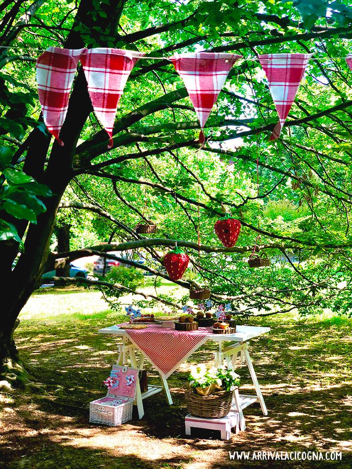 festa compleanno picnic