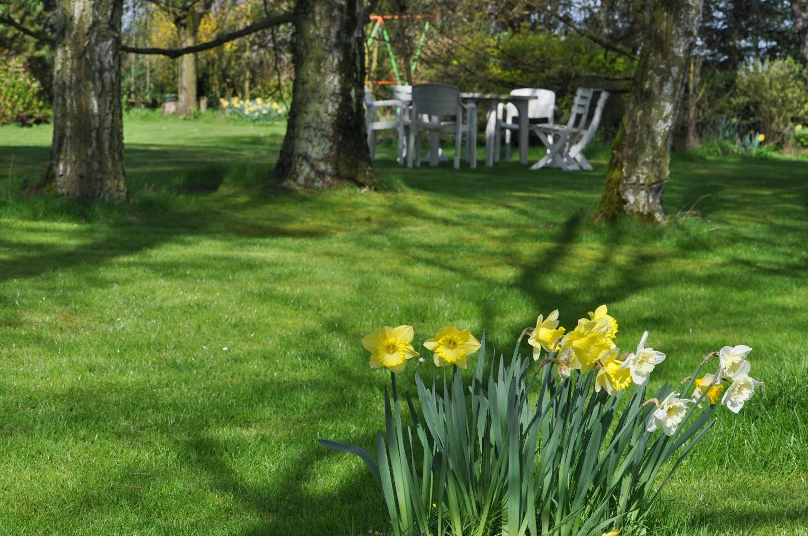 Fleurs de la sauvagine mon retour au jardin de la for Au jardin des amis