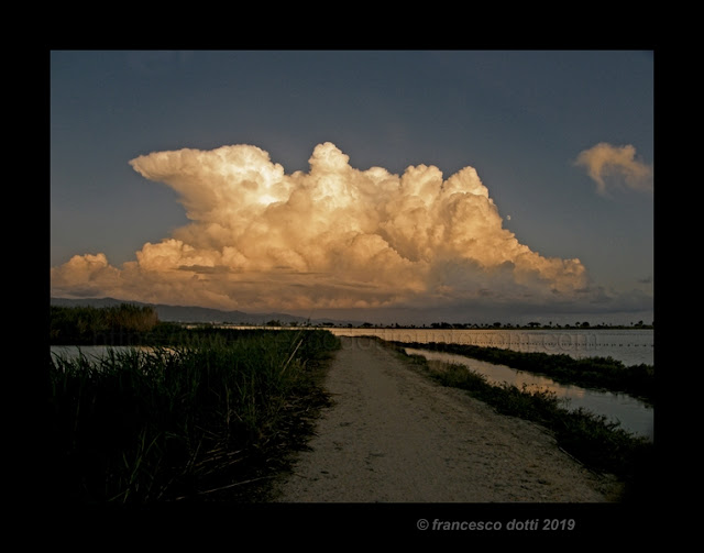 Molentargius nuvole
