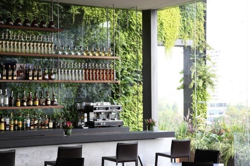 azoteas verdes y jardines verticales casa haus decoraci n. Black Bedroom Furniture Sets. Home Design Ideas