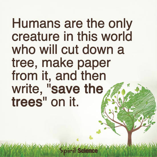 Humans Are The Only Creatures In This World Who Will Cut Down A Tree
