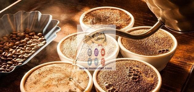 فوائد واستخدامات القهوة