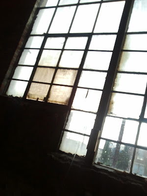 loft windows