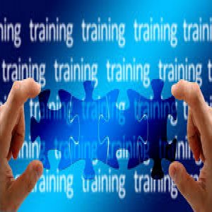 why-sales-training-succeeds