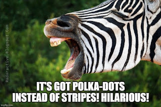 A zebra with spots instead of stripes caused a bit of excitement. This is caused by a rare mutation, but no, it has nothing to do with evolution.