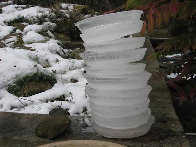 Frozen Bird Water 2010Dec26-10rings