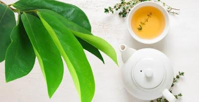 Ramuan Obat Tradisional Untuk Wasir Bengkak