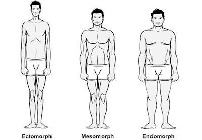 Hardgainers Ectomorphs Body