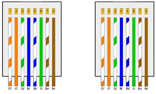 Urutan Kabel Straight dan Fungsinya
