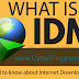 How Internet Download Manager(IDM) works? Interesting facts you may not know about best download manager
