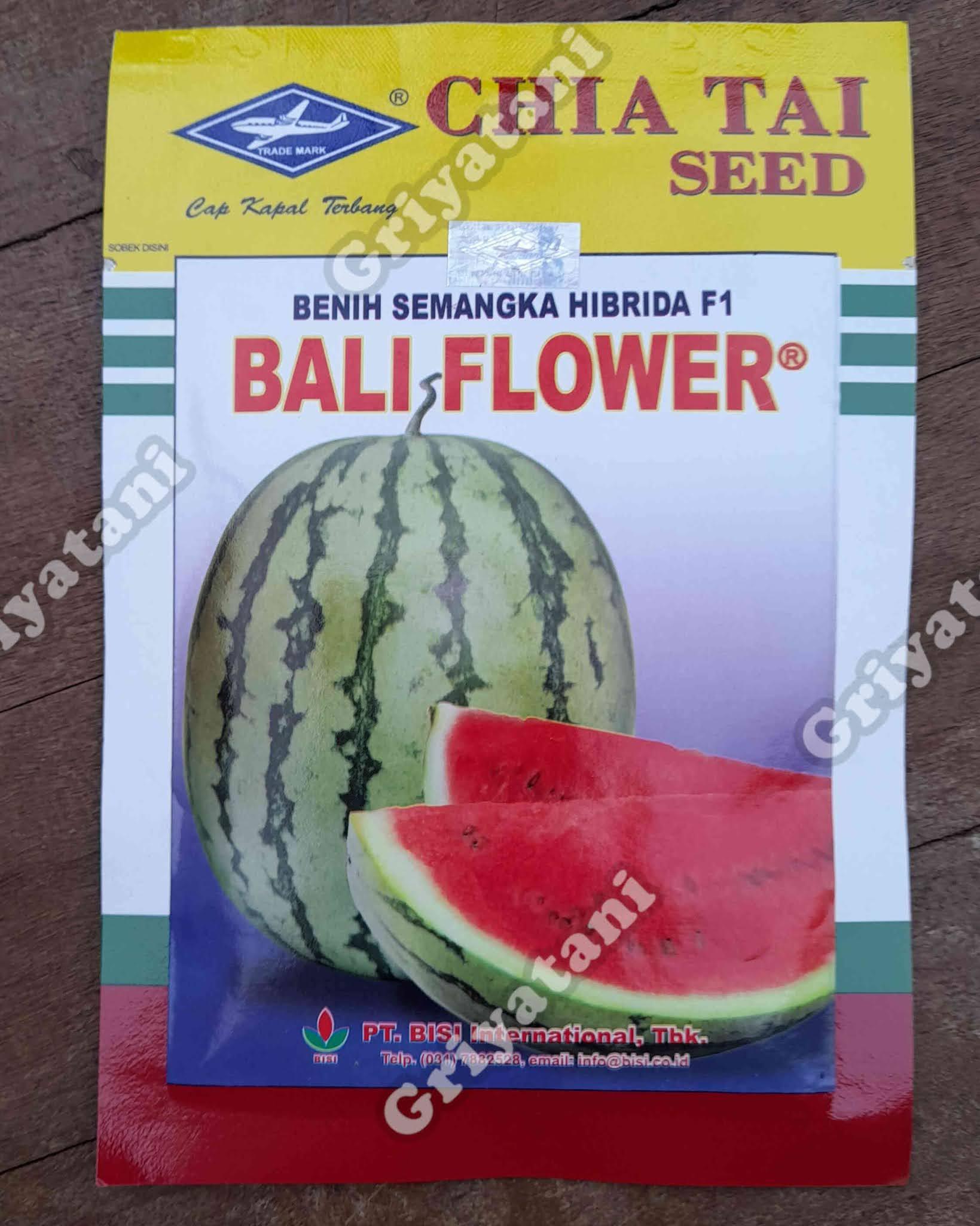 semangka Bali Flower