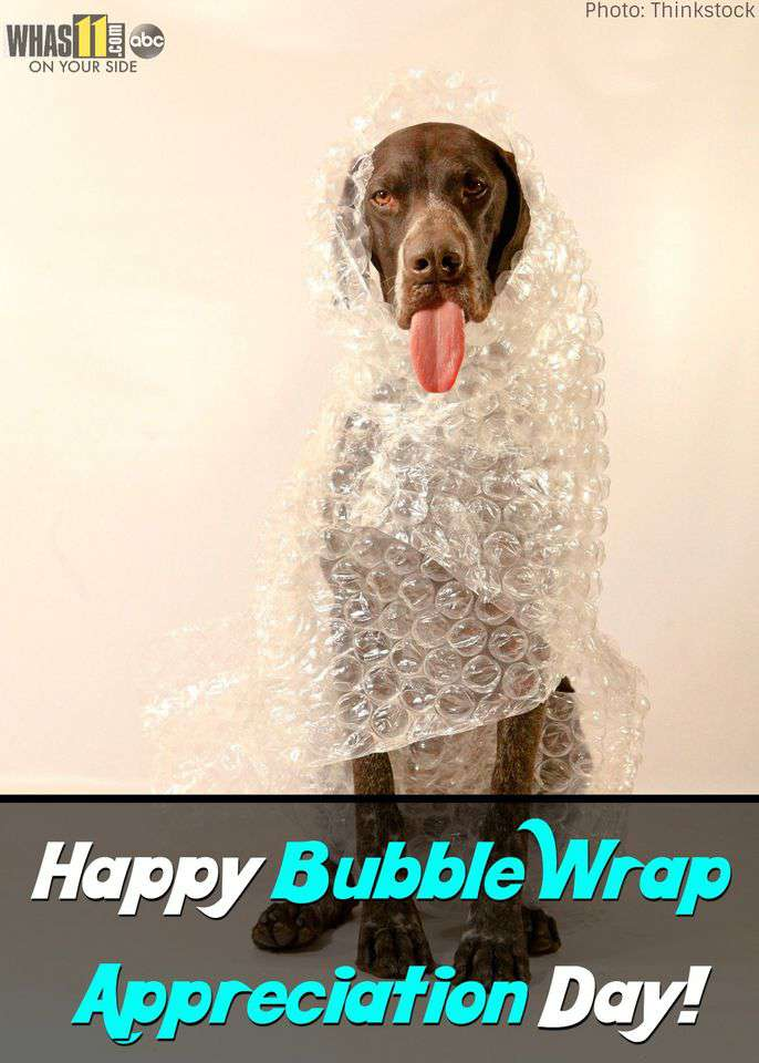 National Bubble Wrap Appreciation Day Wishes Images download