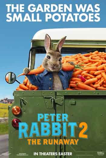 Peter Rabbit 2 2021 480p 300MB BRRip Dual Audio [Hindi - English]