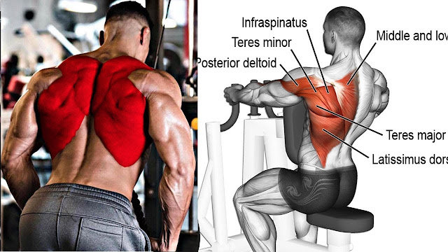 6 Best Exercises To Build Massive Back