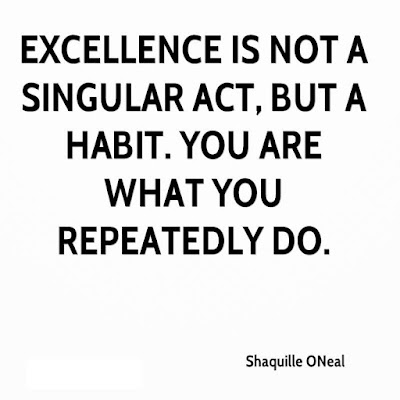 Quotes Excellence Is Not An Act