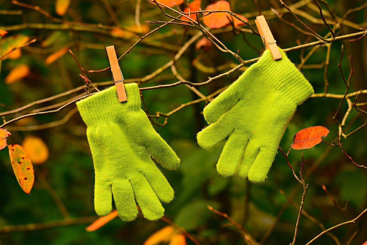 par de luvas verdes infantis penduradas em uma arvore de outono
