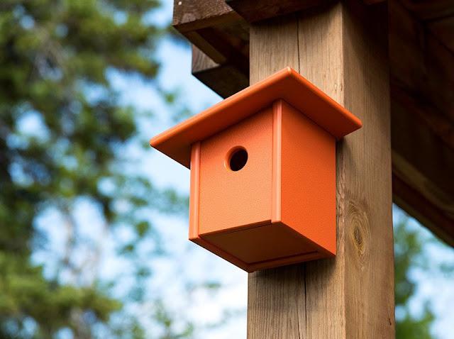 Sangkar Burung - Desain Loll