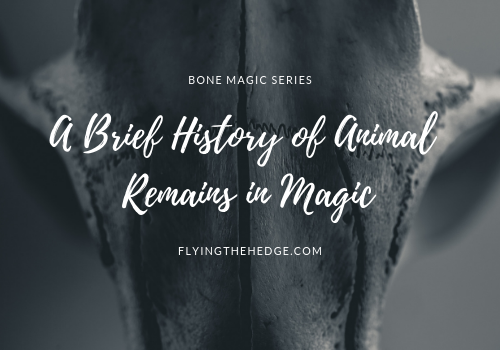 A Brief History of Animal Remains in Magic