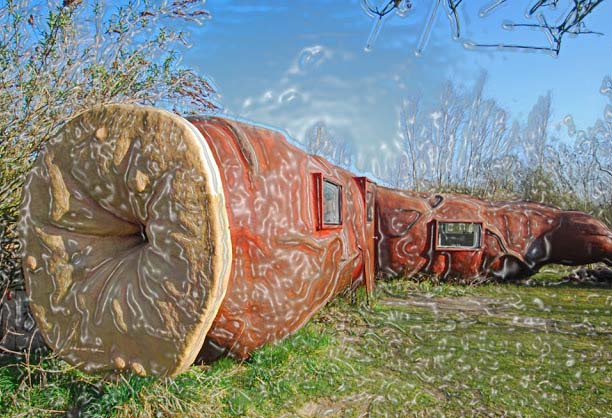 Joep Van Lieshout created this rare place to spend a night; a Cas Anus is an art sculpture that looks like a huge intestine. In the inner side you will find a hot water bathing facility, an electric heater and a double bed.