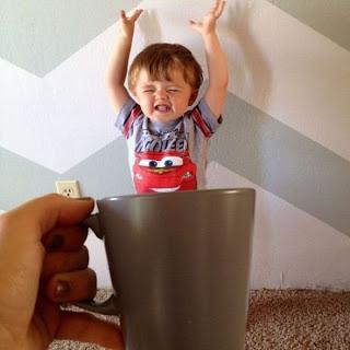 fotos de bebes en tazas.