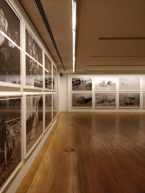 Renate Graf e a fotografia que faz pensar