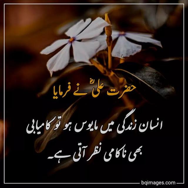 quotes of hazrat ali in urdu