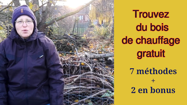 Trouver du bois de chauffage gratuit : 7 méthodes + 2 en bonus (vidéo)