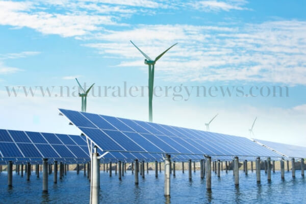 Chief Ministers pledged support for renewable energy, making investors happy