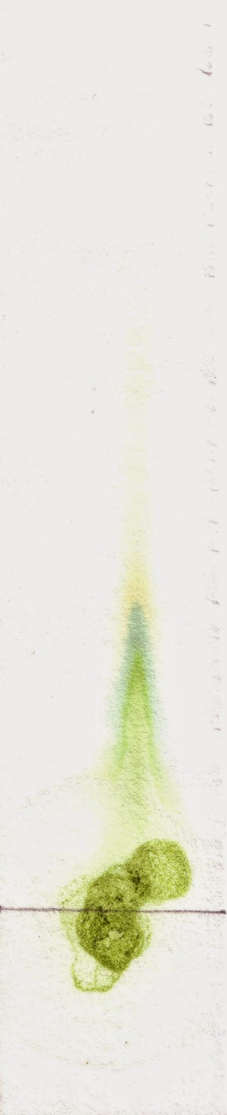 Cromatograma de clorofila bruta