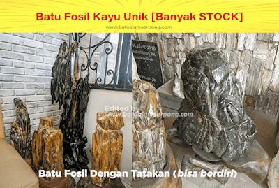 batu fosil kayu untuk hiasan rumah