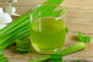 Aloe vera juice: how and how much to consume