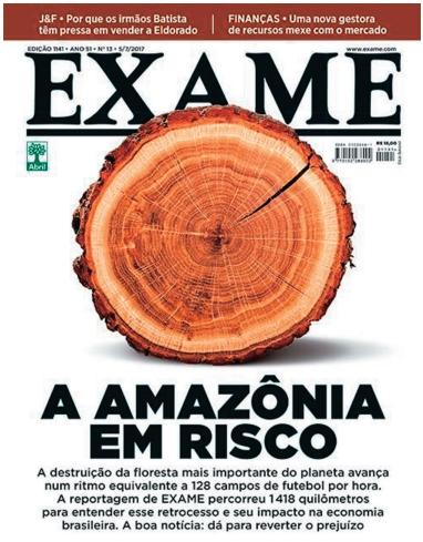 A Amazônia em Risco