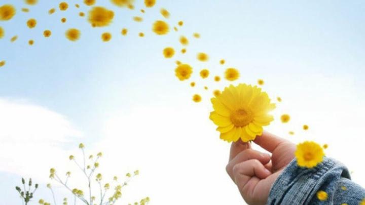 Những chỉ dẫn của Kinh Thánh giúp tìm thấy hạnh phúc
