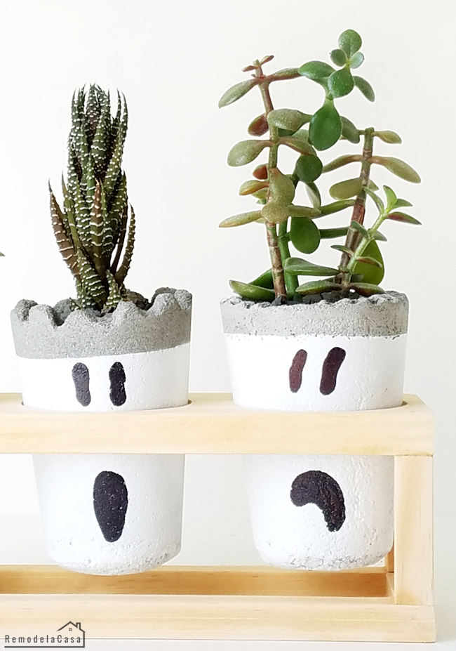 Succulent ghost planters on wooden stand