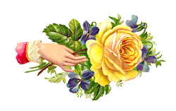 rose clip flowers yellow victorian clipart graphic flower antique purple hand scrap roses welcome forget baby floral cliparts whimsy blumen