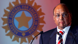 sharad pawar Latest News Marathi