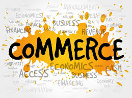 12th Commerce Question Bank EM - PDF