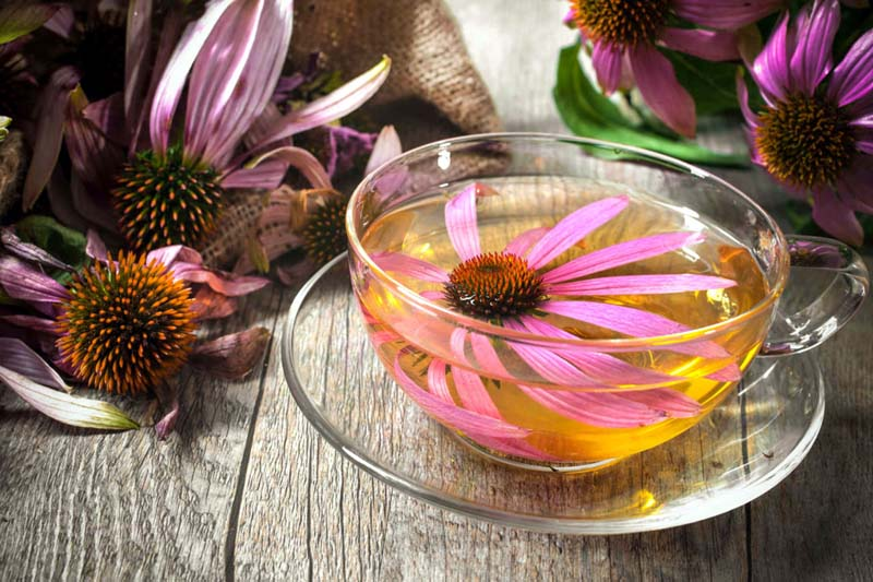 5 Soothing Teas That Can Fight Cold Symptoms