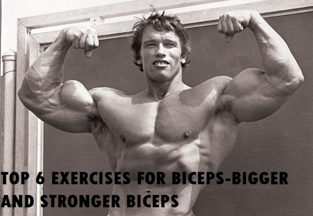 TOP 6 EXERCISES FOR BICEPS-BIGGER AND STRONGER BICEPS