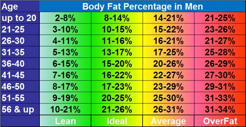 Average Body Fat Male 16