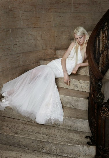 Best Vera Wang Wedding Dresses 2015 ( New Collection )