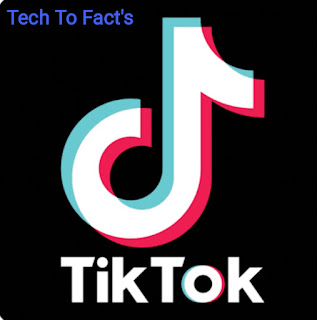 How did Tik Tok start?