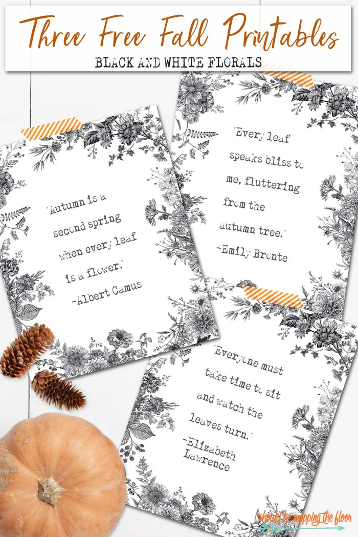 Free Black and White Printables for Fall
