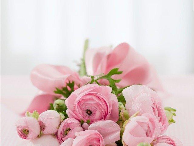 rangakain bunga