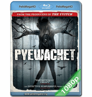 PYEWACKET (2017) 1080P HD MKV ESPAÑOL LATINO