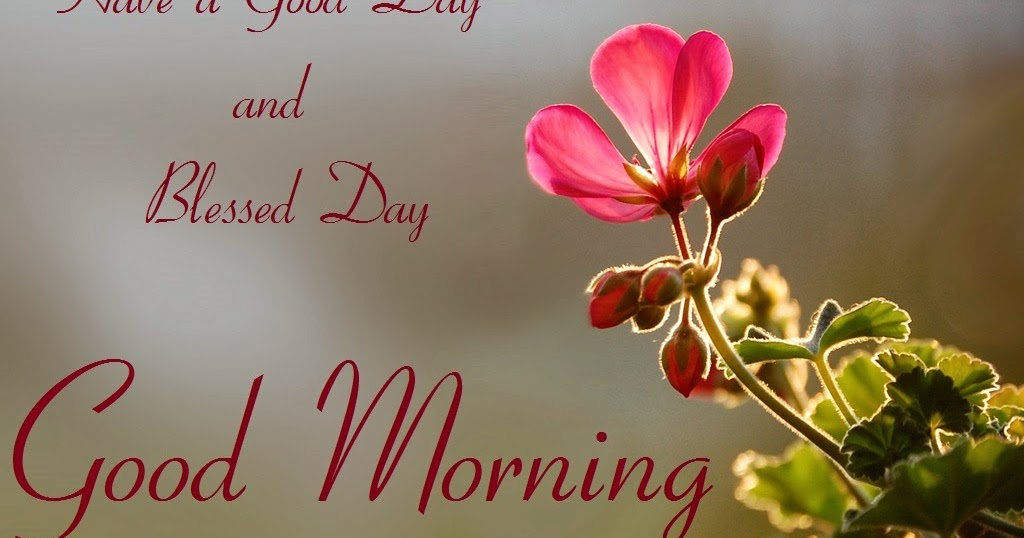Hot Good Morning Wishes Photo's, Messages Cards   Festival