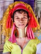suku dayak salah satu suku di Indonesia